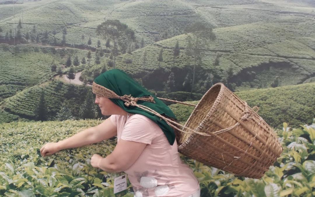 Tea Sipper Podcast #7: Naomi Rosen