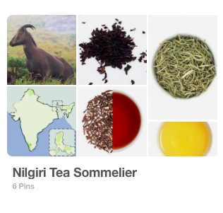 Pinterest Board: Nilgiri Tea Sommelier