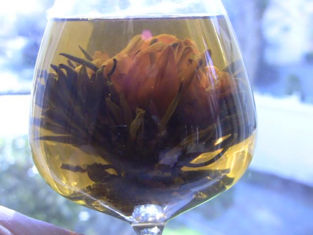 flowering-tied-tea-blooming